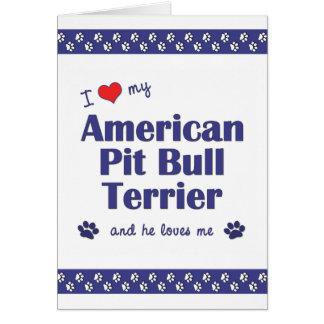 I Love My American Pit Bull Terrier (Male Dog) Note Card