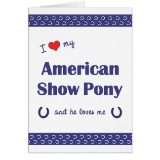 I Love My American Show Pony (Male Pony) Note Card