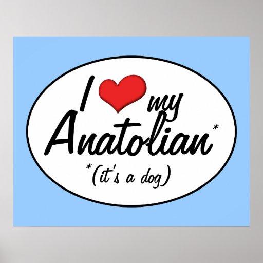 I Love My Anatolian (It's a Dog) Poster