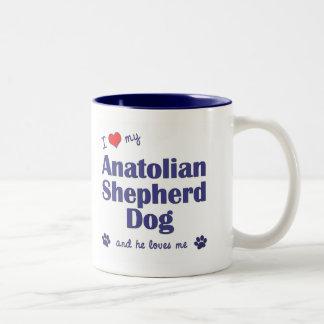 I Love My Anatolian Shepherd Dog (Male Dog) Two-Tone Coffee Mug