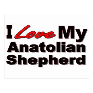 I Love My Anatolian Shepherd Merchandise Postcard
