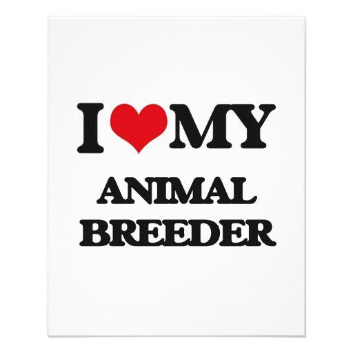 I love my Animal Breeder Flyers