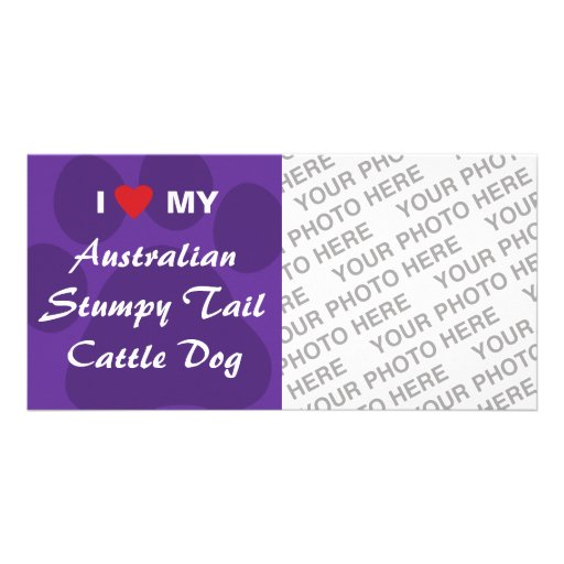 I Love My Australian Stumpy Tail Cattle Dog Picture Card