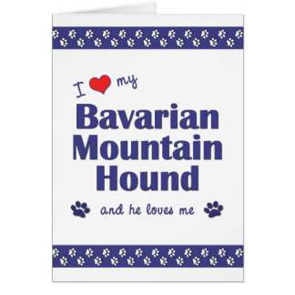 I Love My Bavarian Mountain Hound (Male Dog) Card