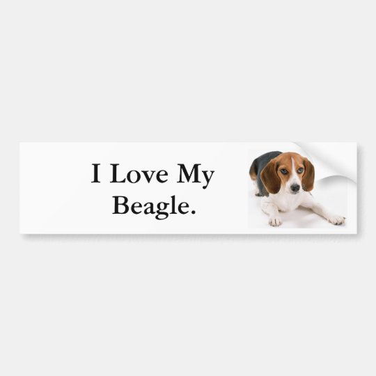 I Love My Beagle. Bumper Sticker