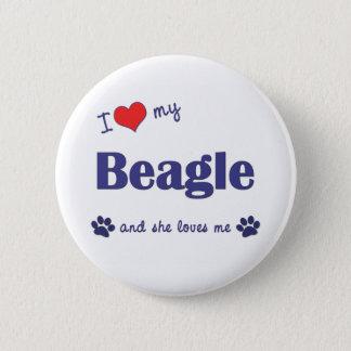 I Love My Beagle (Female Dog) 6 Cm Round Badge