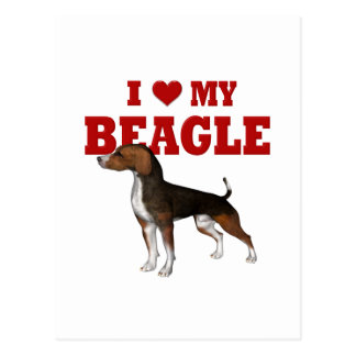 I love my Beagle Postcard