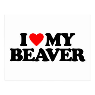 I LOVE MY BEAVER POSTCARD