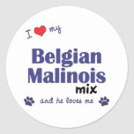 I Love My Belgian Malinois Mix (Male Dog) Sticker