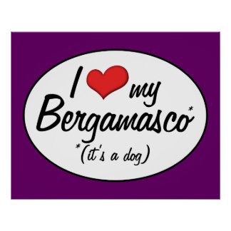 I Love My Bergamasco (It's a Dog) Posters