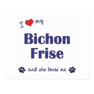 I Love My Bichon Frise (Female Dog) Postcards