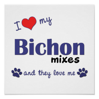 I Love My Bichon Mixes (Multi Dogs) Poster Print