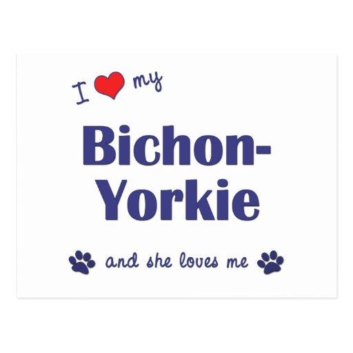 I Love My Bichon-Yorkie (Female Dog) Post Cards