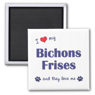 I Love My Bichons Frises (Multiple Dogs) Square Magnet