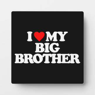 I LOVE MY BIG BROTHER DISPLAY PLAQUE