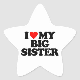 I LOVE MY BIG SISTER STICKERS