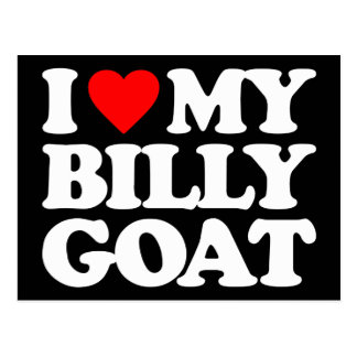 I LOVE MY BILLY GOAT POSTCARD