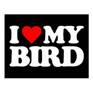 I LOVE MY BIRD POSTCARD