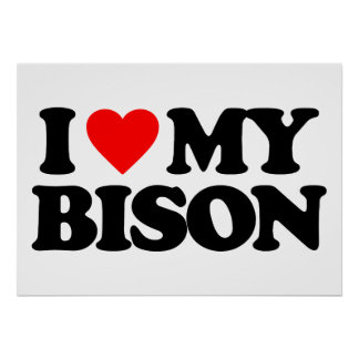 I LOVE MY BISON POSTER