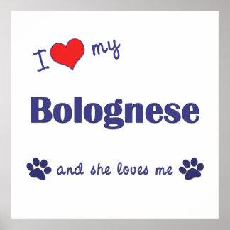 I Love My Bolognese (Female Dog) Print