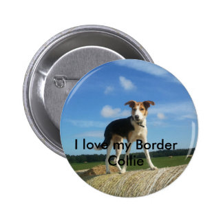 I love my border collie pins