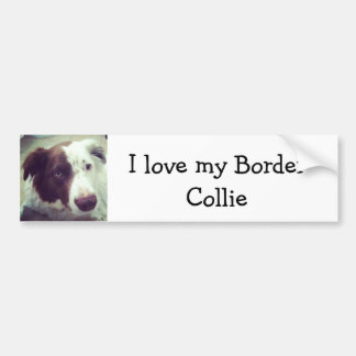 I love my Border Collie Bumper Sticker