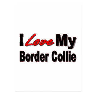I Love My Border Collie Merchandise Postcard