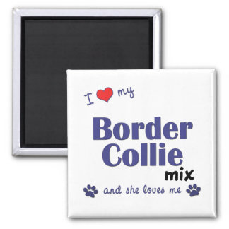 I Love My Border Collie Mix (Female Dog) Square Magnet