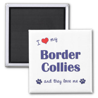 I Love My Border Collies (Multiple Dogs) Square Magnet