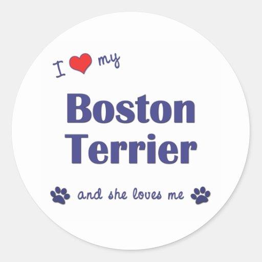 I Love My Boston Terrier (Female Dog) Round Sticker