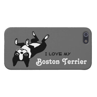 I Love My Boston Terrier iPhone 5 Case