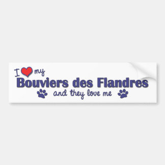 I Love My Bouviers des Flandres (Multiple Dogs) Bumper Sticker
