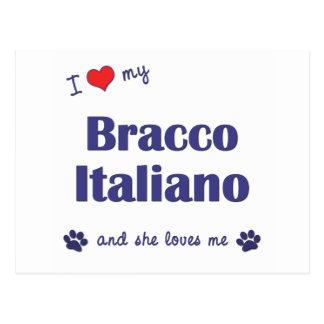 I Love My Bracco Italiano (Female Dog) Postcard