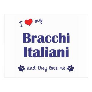 I Love My Bracco Italiano (Multiple Dogs) Postcard