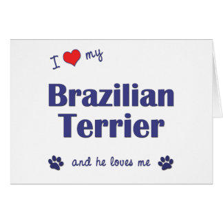 I Love My Brazilian Terrier (Male Dog) Greeting Card