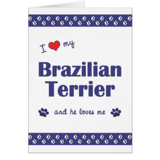 I Love My Brazilian Terrier (Male Dog) Note Card