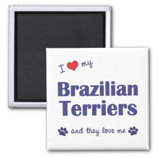 I Love My Brazilian Terriers (Multiple Dogs) Square Magnet