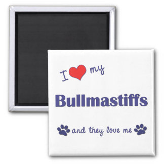 I Love My Bullmastiffs (Multiple Dogs) Magnet