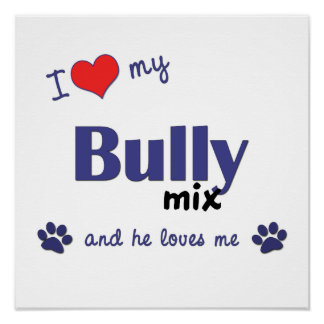 I Love My Bully Mix (Male Dog) Poster Print