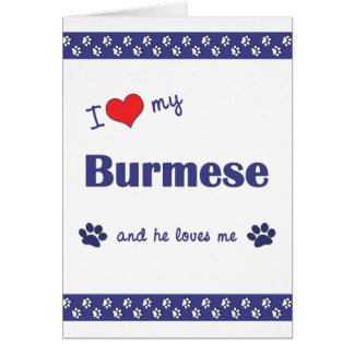 I Love My Burmese (Male Cat) Card