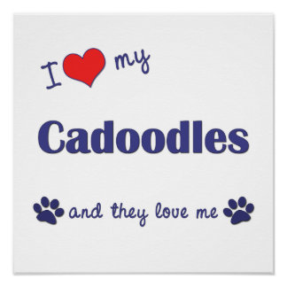I Love My Cadoodles (Multiple Dog) Poster Print