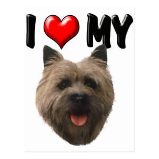 I Love My Cairn Terrier Postcard