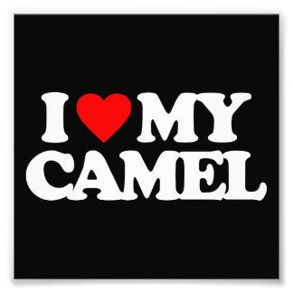 I LOVE MY CAMEL PHOTO