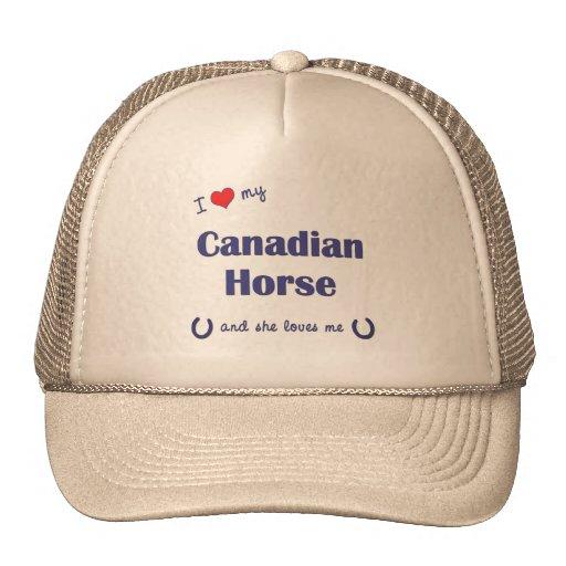 I Love My Canadian Horse (Female Horse) Hat