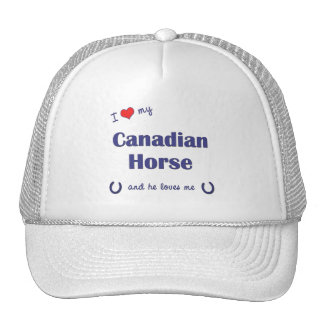 I Love My Canadian Horse Male Horse Mesh Hat