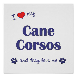 I Love My Cane Corsos (Multiple Dogs) Print