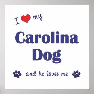 I Love My Carolina Dog Male Dog Print