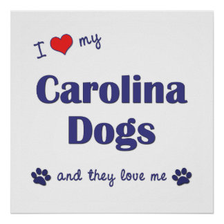 I Love My Carolina Dogs Multiple Dogs Posters