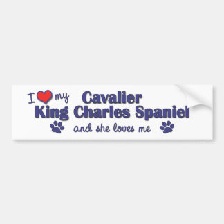 I Love My Cavalier King Charles (Female Dog) Bumper Sticker