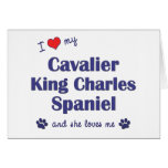 I Love My Cavalier King Charles (Female Dogs) Greeting Cards